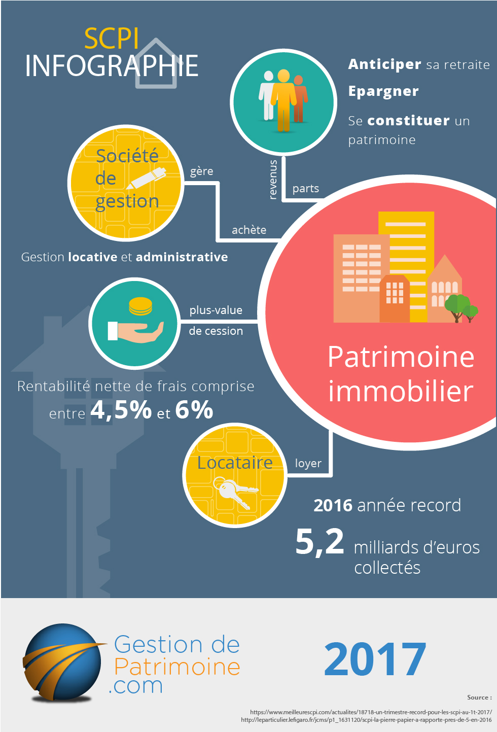 infographie SCPI 2017
